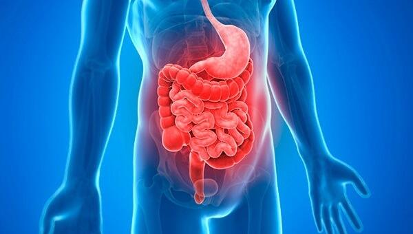 Exames e Consultas com Médico Gastroenterologista em Curitiba