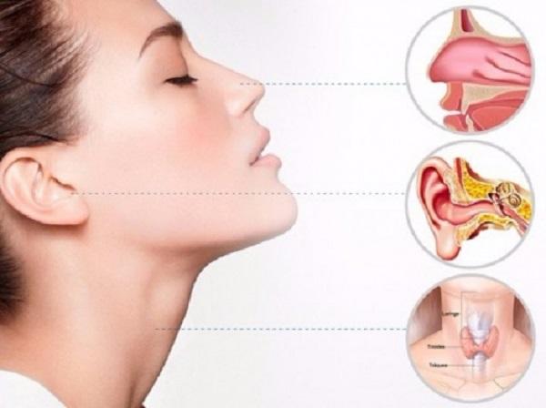 Consulta e Exames com Médico Otorrinolaringologista em Curitiba