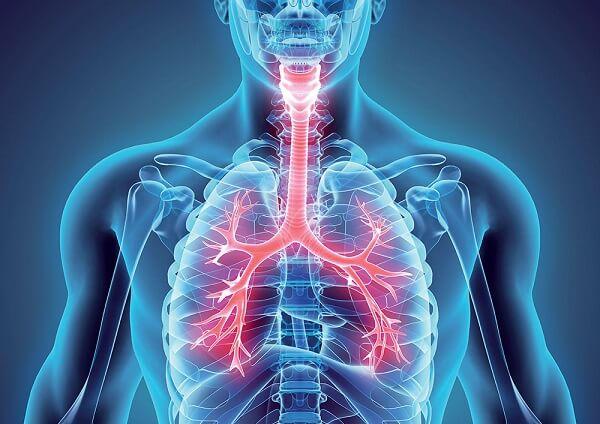 Pneumologista em Curitiba: Médico responsável por cuidar do sistema respiratório